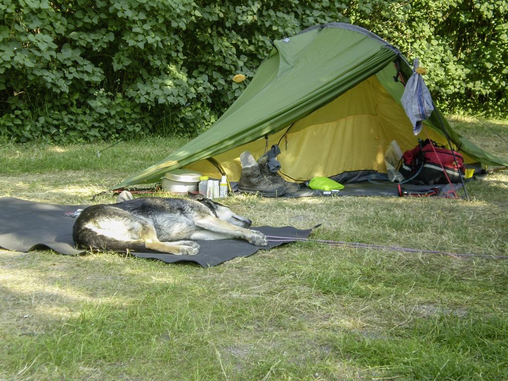 Zelt Für Jakobsweg : Pilgerforum reiseshop gut ausgerüstet