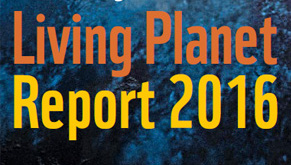 WWF Living Planet Report