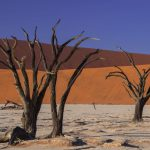 Radreisen: Farbige Wüste in Namibia