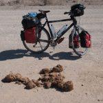 Radreisen: Mit dem Rad in der Wüste Namibias